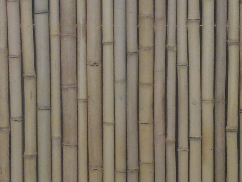 Jati Natural Bamboo Fence Closeup