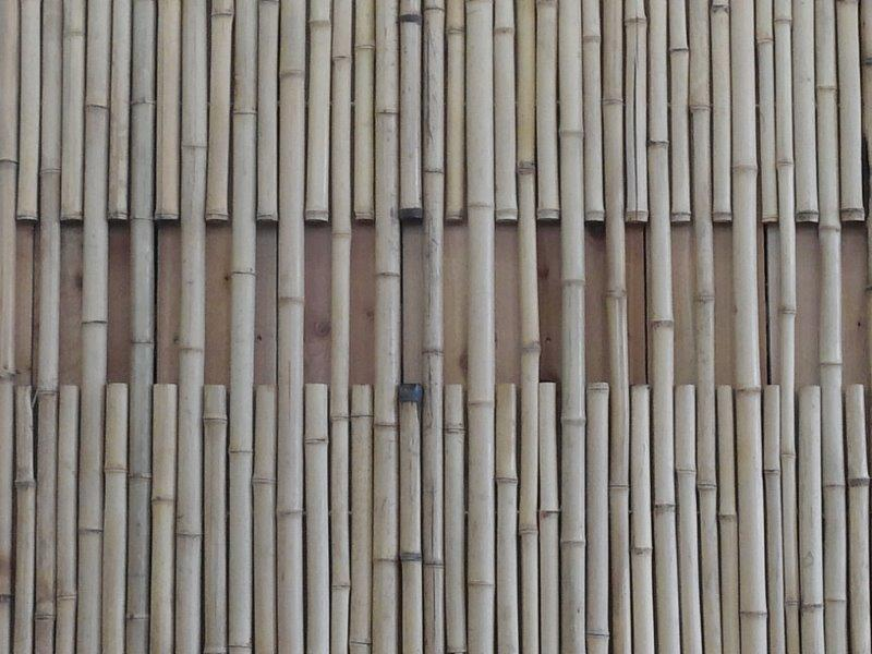 San Diego Natural Bamboo Fence Closeup