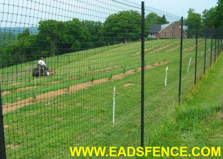 Show products in category Deer Fences