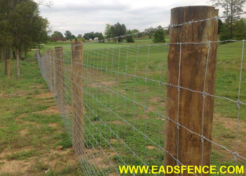 Fence With Wire | Ohio Fence Company Eads Fence Co Wire Fence Photo Galleries