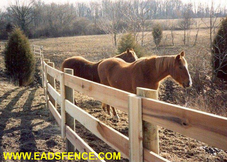 3 Rail Kentucky Board Horse Fence with Faced Posts