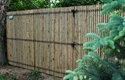 Picture of Bamboo Privacy Photo Gallery