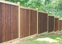 Picture for category Bamboo Fences