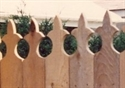 Picture for category Victorian Privacy Fences