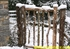 Picture of Rustic Log Gates
